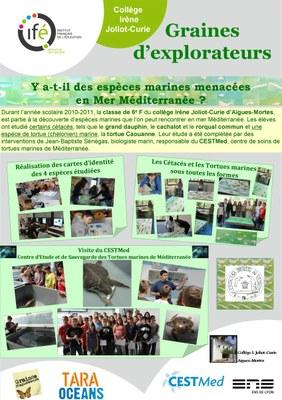 03 Aigues Mortes Poster