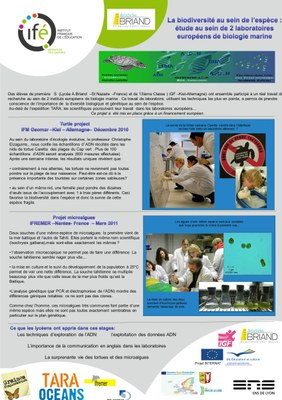 19 Saint Nazaire Poster