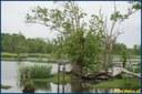 Marais Audubon