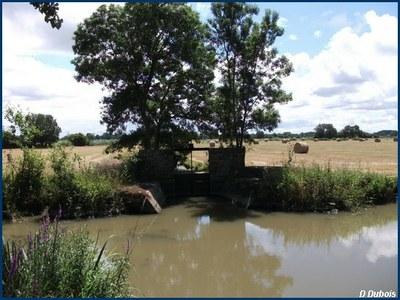 Marais Audubon Juillet
