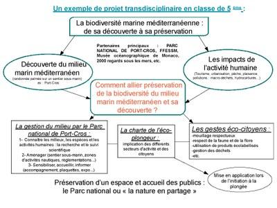 Organigramme projet