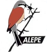 Logo Alepe