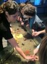 Aquarium et réserve naturelle de Banyuls