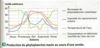 production phytoplancton