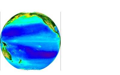 Phytoplankton in Pacific Océan