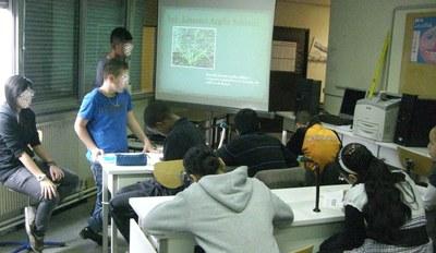 Les lycéens expliquent... les collègiens travaillent...