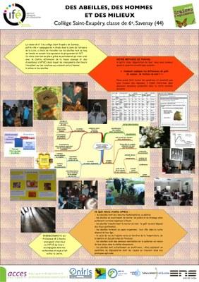 06_Savenay_poster_2013.jpg
