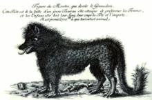 Gévaudant gravure de cuire de 1765