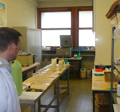 The room preparation of the laboratory POLEN