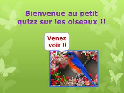 QuizzOiseaux1
