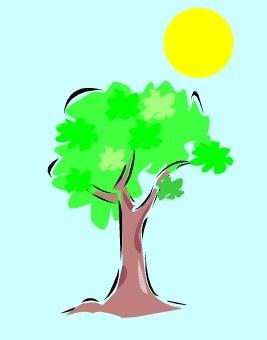 arbrebilan