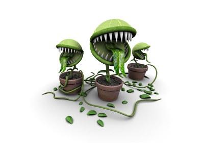plantes carnivores 3d wallpaper