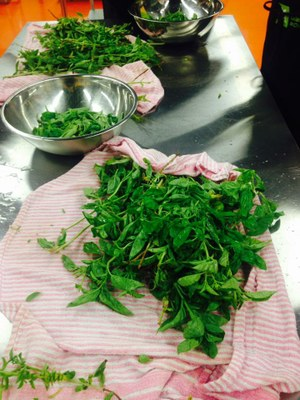 Cuisiner le basilic