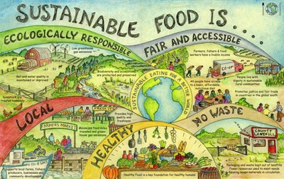 cropped sustainable food