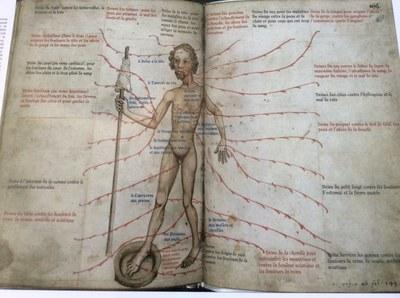 Encyclopédie médicale