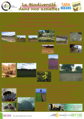 10 Remoulins posterGE 2012